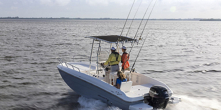 bayliner t21 bay running