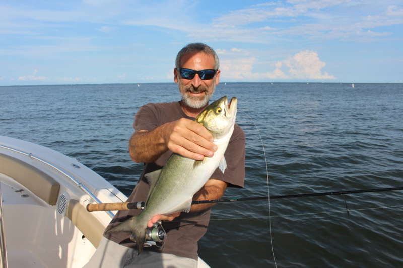 angler with a bluefish