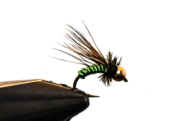 caddis fly for fly fishing