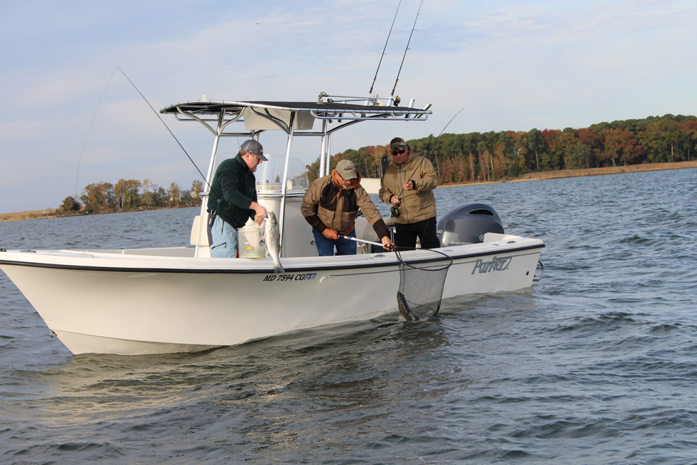 fishing from a center console boat