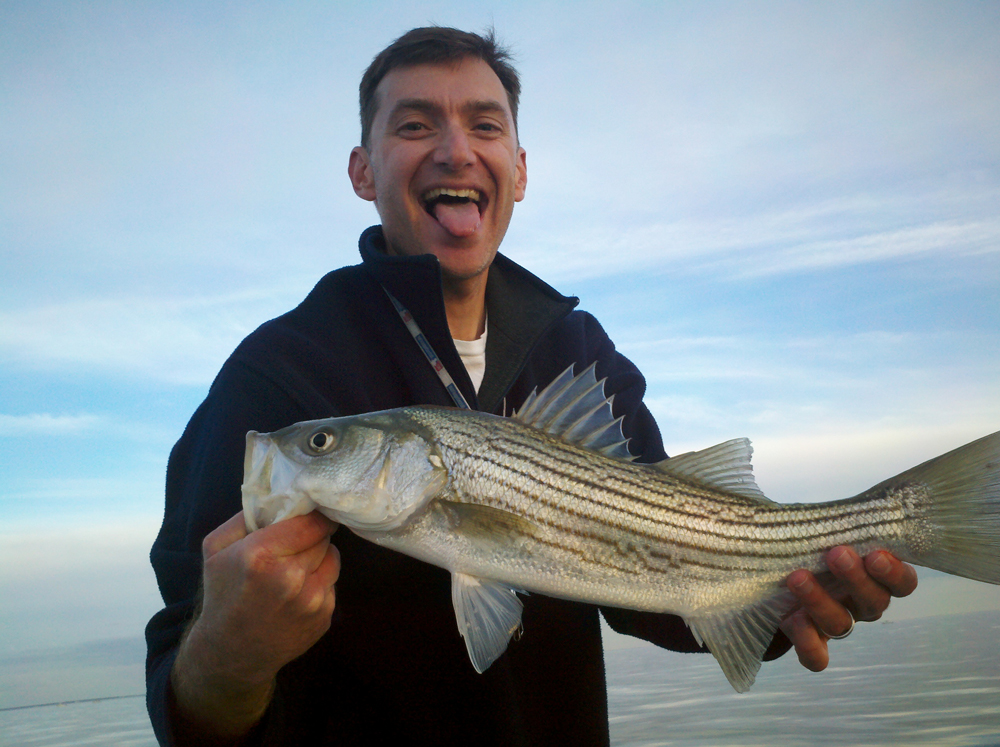 striper jigged chesapeake bay