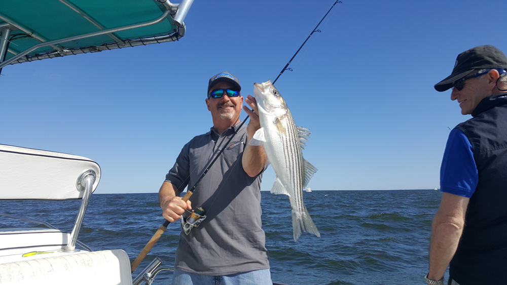 jigging rockfish chesapeake bay