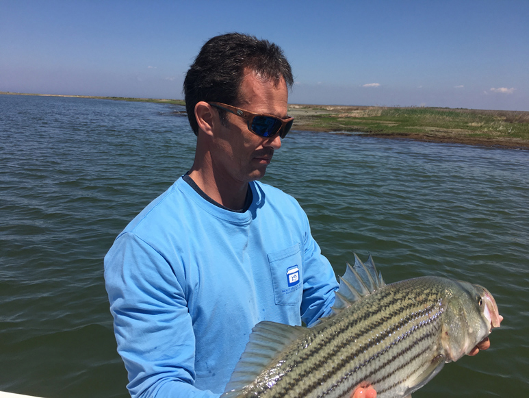 catch and release striper fishing