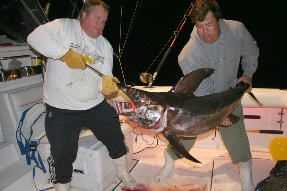 swordfish fishing at night