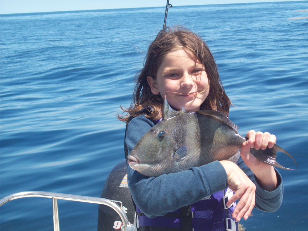 fishing for triggerfish