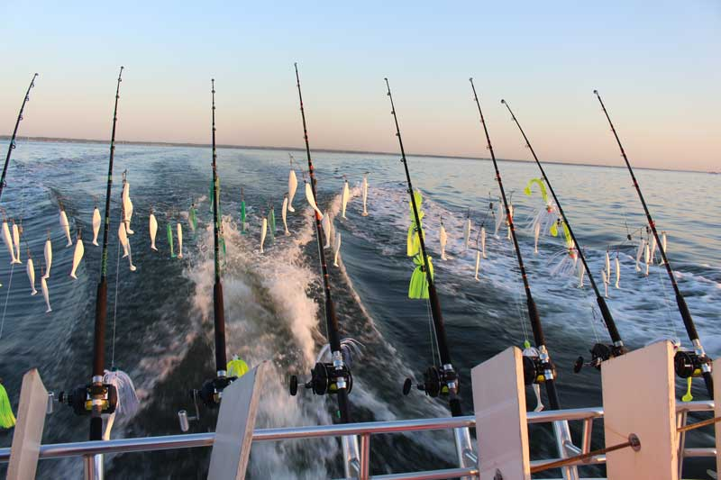 Gearing Up, Part II: Choosing the Best Chesapeake Bay Trolling
